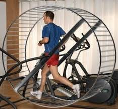 exercise-for-health-hamster-wheel-2