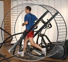 exercise-for-health-hamster-wheel-2