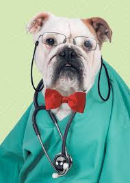 prostate-sniffing-dogs-doctor