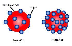 glucose-a1c-blood