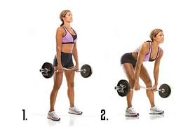 exercise-biopower-deadlifts