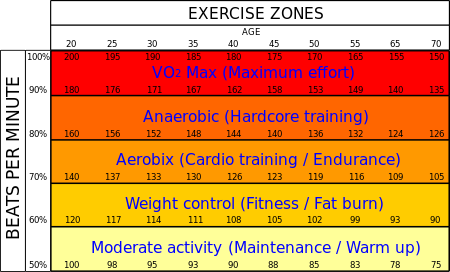 exercise-heart-levels