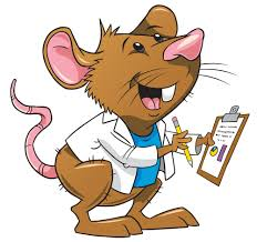 doc-rat-rat